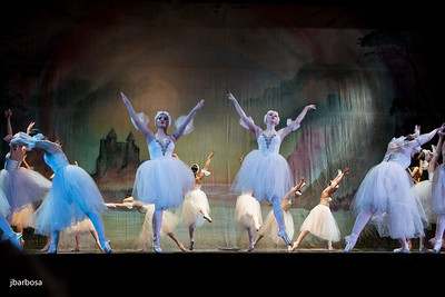 Birds of Ballet - April 2015