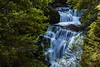 Ferguson Falls, Tasmainia