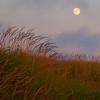 Moonrise Sand Dune