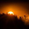 Autumn Sun Lashes