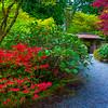 In Yao Garden