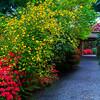 Yao Garden Path