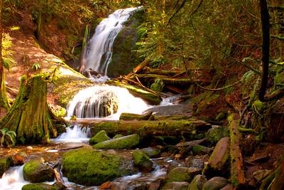 Coal Creek Falls Issaquah