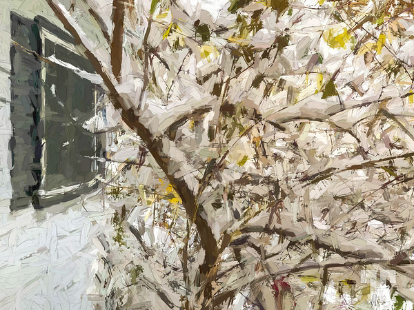 snow-branches-painting
