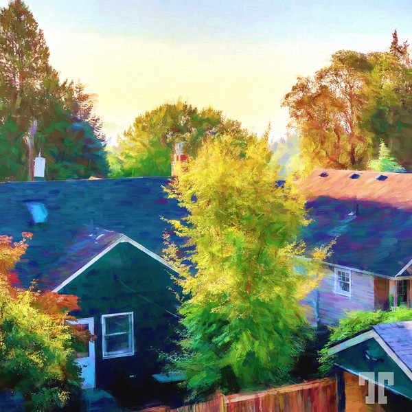 seatle-painting