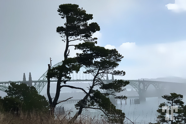 bridge-Newport-oregon