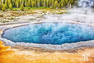 Crested Pool at Yellowstone National Park