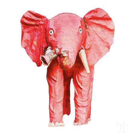pink-elephant-white-square