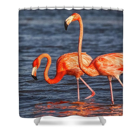 two-pink-flamingos-tatiana-travelways-shower-curtain