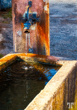 Water fountain in Alsace (xx)
