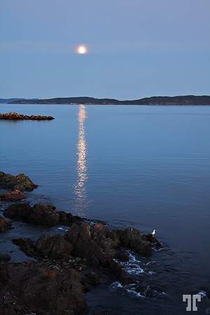 Aug 26, 2010<br /> <br /> Moonlight in Newfoundland, Atlantic Canada<br /> <br /> * I'm late today because of a power failure this morning in this area.<br /> <br /> ** Better viewed larger. Newfoundland, Canada, Atlantic Canada, maritimes