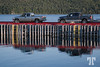 Trucks and reflections in Newfoundland, Canada, Atlantic Canada, maritimes