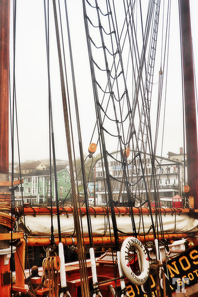 """Bluenose II "" the famous tall ship of Atlantic Canada, Lunenburg, Nova Scotia, Canada (aa)"
