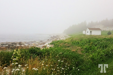 Fog in St. Margret's Bay, Nova Scotia  (ZZ)