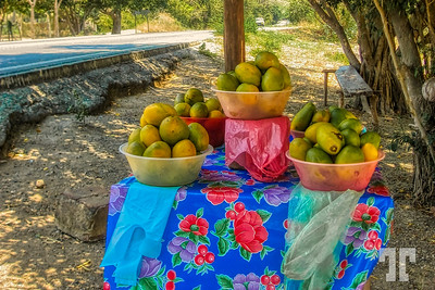 Road-to-Acapulco-fruit-stand