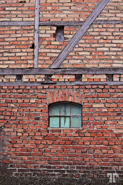 Brick wall in Alsace (xx)