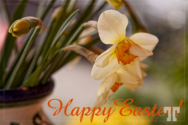 12 April 09  Happy Easter to those who are celebrating this holiday today!