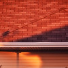 July 28, 09<br /> <br /> Roof in the evening light