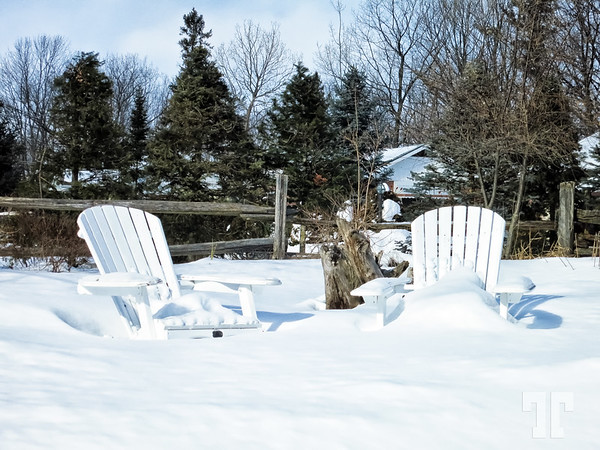 Comfortable Chairs for the Summer :)  (ZZ)