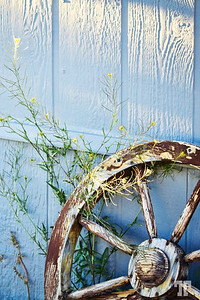country-style-decor