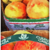 Fresh local peaches at the market, in Ontario, Canada iPhone 13 Case