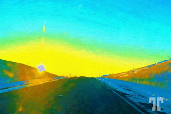 sunshine-road-MT-fauve