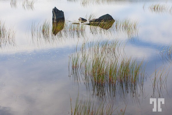 pond-rocks-reflections-wp