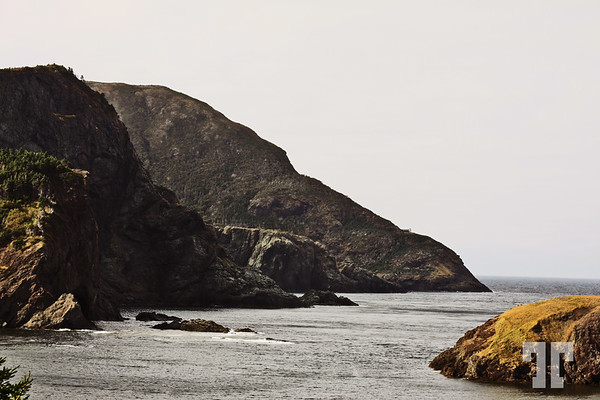 Newfoundland West Coast