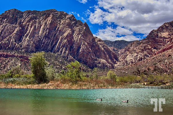 Harriot Lake at Spring Mountain Ranch, Las Vegas, Nevada