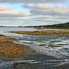 Nova Scotia low tide landscape in the Bay of Fundy, b