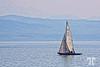 - Sailboat on Lake Constance (Bodensee) Bodensee-Lake-Constance