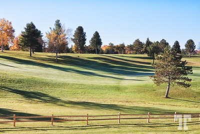 Frosty morning at the golf course in Lexington, Michigan