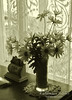Window and flowers, monochrome