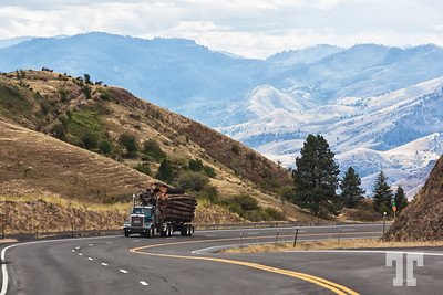 Road crossing the Idaho Mountains from Grangeville to the Salmon River valley  (ZZ)