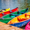 Dows Lake colorful paddleboats