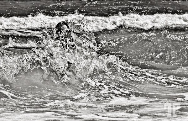 "6 March 09  Water fun 2  The seashore offers infinite photographic possibilities and I took a lot of shots having in mind the #20 Contest ""Chaos or Serenity"" (B &W only)  Please tell me what you think."