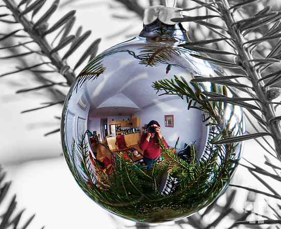 sp-photographing-christmas