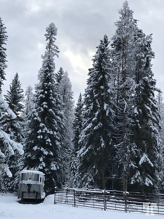 winter-whitefish-montana