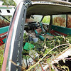 "an abandoned car in Mulu, Sarawak<br><span style=""font-size:75%"">©Yangchen Lin</span>"