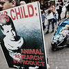 """a rally in Cambridge against animal testing<br><span style=""""font-size:75%"""">©Yangchen Lin</span>"""