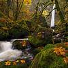 Elowah Mystery of Autumn
