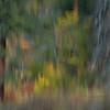 Tumwater Canyon Visions