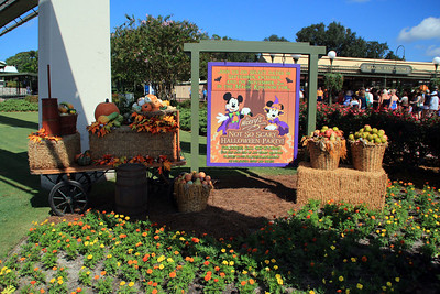 New Fantasyland Belle and More: 09-05-2012