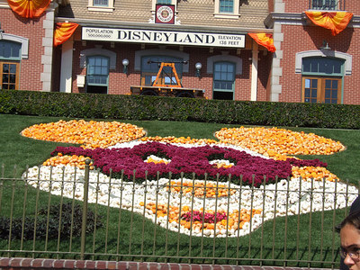 The mask is looking much nicer since the flowers are in bloom