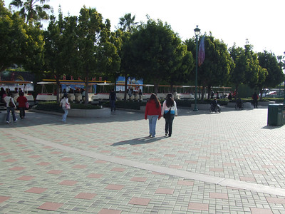 Disneyland Resort - 12/31/06