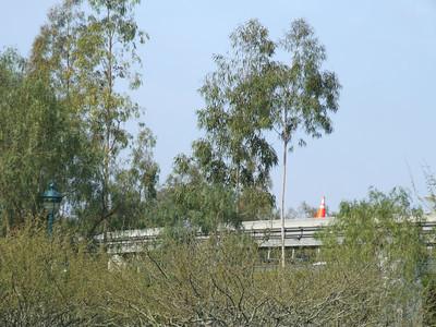 It is located near the Mickey & Friends DtD Tram Station