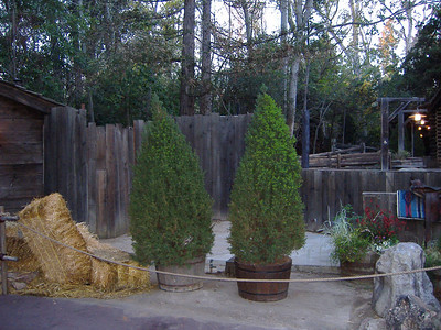 The Christmas stuff have been removed for the Big Thunder Ranch area, but with the tree gone, what is replacing the Stagecoach's 50th??? (This is where the Stagecoach was prior to the Christmas season).
