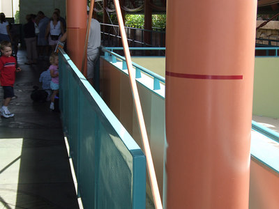This is near the front of the Monorail loading station at DtD, anybody know why they have the red lines.  I know there isn't a height requirement.