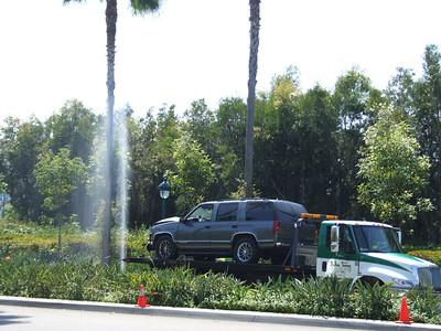 Alas, the sprinkler system isn't.....