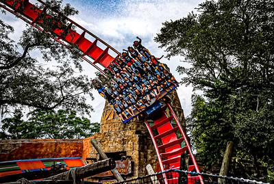 Sheikra Busch Gardens - Tampa, Florida
